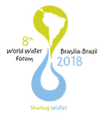 The Network at the 8th World Water Forum